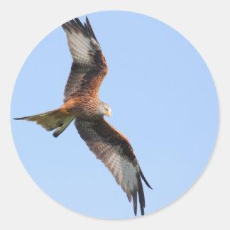 Wild Red Kites Round Sticker