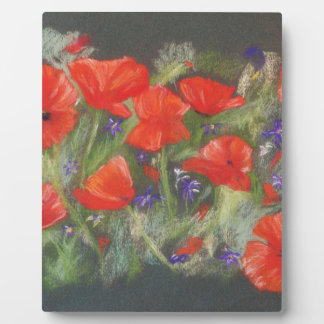 Wild red poppies display plaque