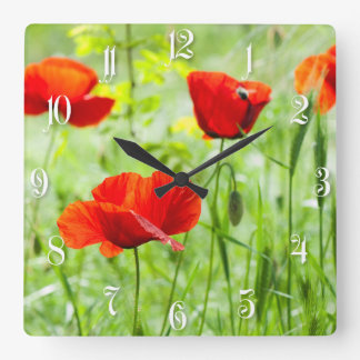 Wild red poppy flower square wall clock