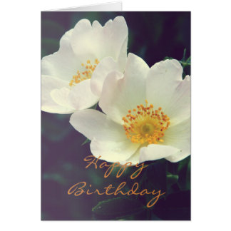 Wild Rose Blooms Card