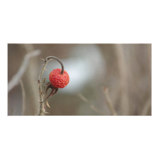 Wild Rose Fruit Photocard Customised Photo Card