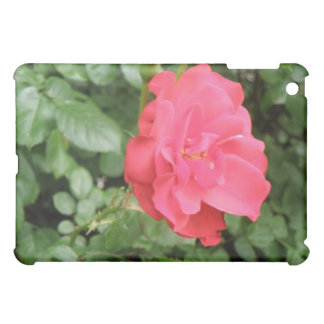 Wild Rose  iPad Mini Case