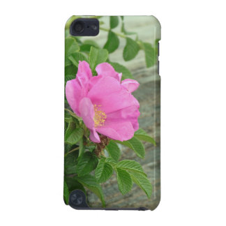Wild Rose iPod Case iPod Touch (5th Generation) Cases