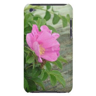 Wild Rose iPod Case