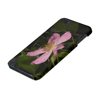 Wild Rose iPod Touch (5th Generation) Covers