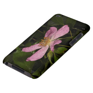 Wild Rose iPod Touch Case