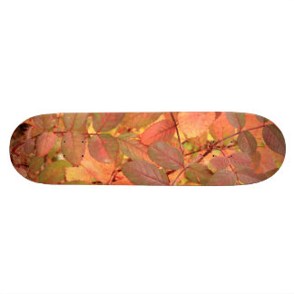 Wild Rose leaves in autumn Skateboard