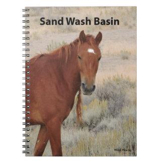 Wild Rose of Sand Wash Basin Journal