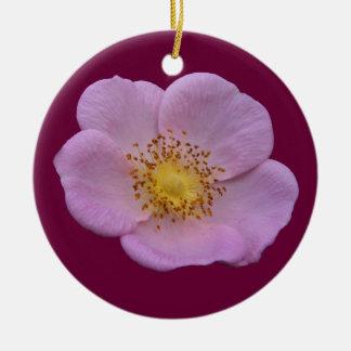Wild Rose ~ ornament