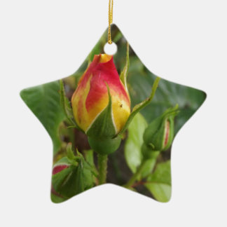 Wild Roses Christmas Ornament