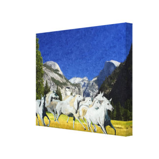 Wild Running Horses Yosmite National Park Canvas Canvas Print