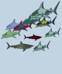 wild sharks, danger tees