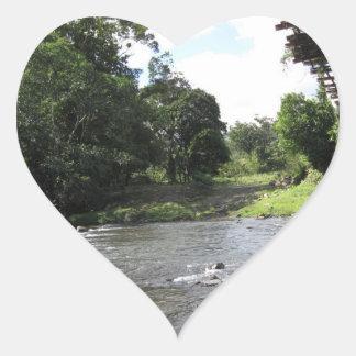 Wild South America - Vintage Bridge n River Sticker