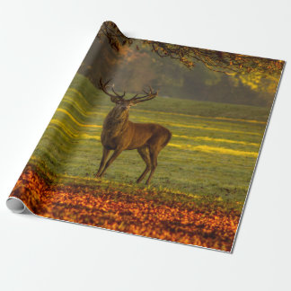 Wild stag wrapping paper