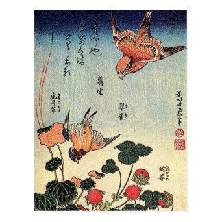 Wild Strawberries and Birds Postcard