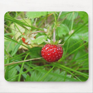 Wild Strawberry 1 Mouse Mat