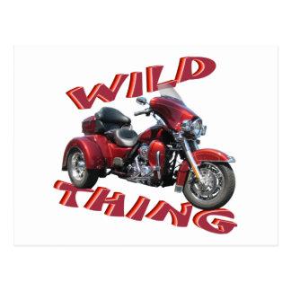 Wild Thing Trike Postcard