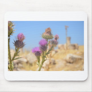 Wild Thistle Mouse Pad