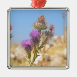 Wild Thistle Silver-Colored Square Decoration