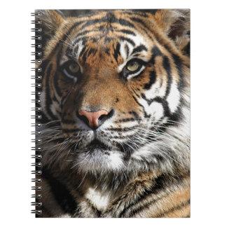 Wild Tiger Notebook