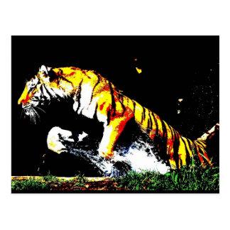 Wild Tiger Postcard
