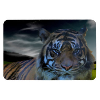 Wild Tiger Watercolor Wildcat Vinyl Magnets