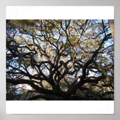 Wild tree poster