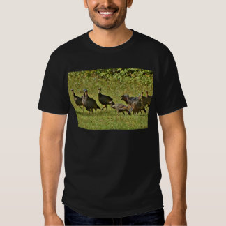 Wild Turkey, Camouflage colors T-shirts