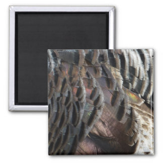 Wild Turkey Feathers I Abstract Nature Design Square Magnet