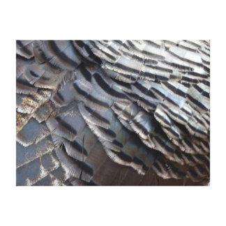 Wild Turkey Feathers II Abstract Nature Design Canvas Print