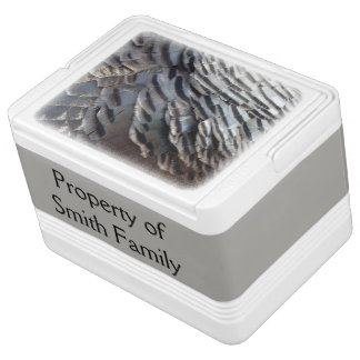 Wild Turkey Feathers II Abstract Nature Design Igloo Cooler