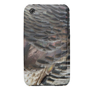 Wild Turkey Feathers iPhone3 Case iPhone 3 Cover