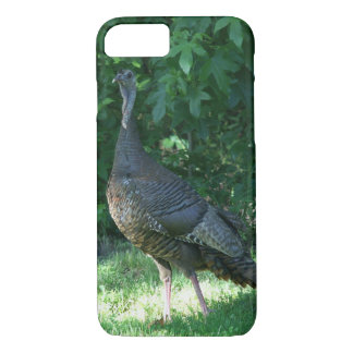 Wild Turkey, iPhone 7 Case. iPhone 7 Case