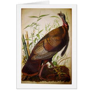 Wild Turkey John James Audubon Greeting Cards