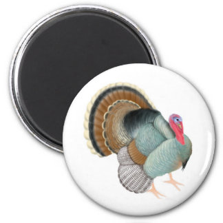 Wild Turkey Magnet