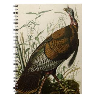 Wild Turkey Notebooks