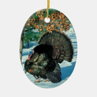 Wild Turkey Photo Holiday Decorations Christmas