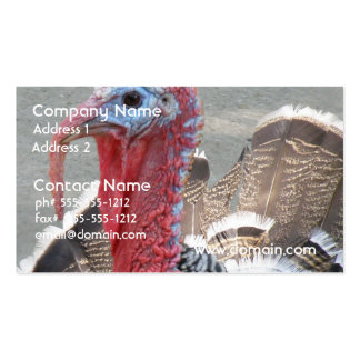 Wild Turkey Picture Business Card