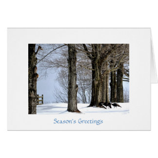 Wild Turkeys Foraging in the Snow Greeting Card