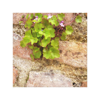 Wild violets canvas wall hanging canvas print