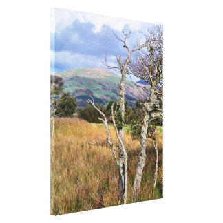 WILD WALES CANVAS PRINT