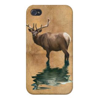 Wild Wapiti Elk Wildlife Animal Art iPhone 4/4S Case
