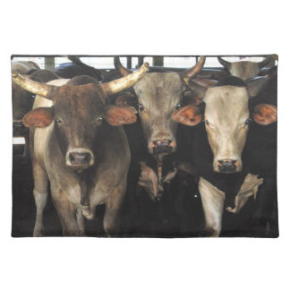 Wild West Rodeo Cow Bulls Southwest MoJo Placemat