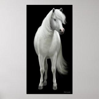 Wild White Horse Poster