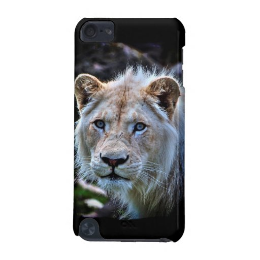 Wild White Lion Cub Big Cat iPod Touch 5G Cases