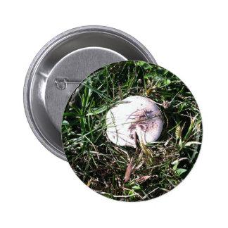 Wild White Mushroom 1 6 Cm Round Badge