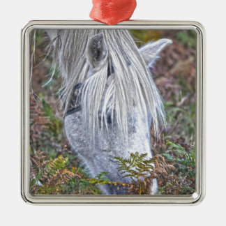 Wild White New Forest Pony Grazing on Bracken Silver-Colored Square Decoration