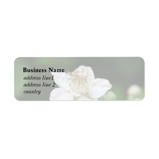 Wild white raspberry flower. return address label