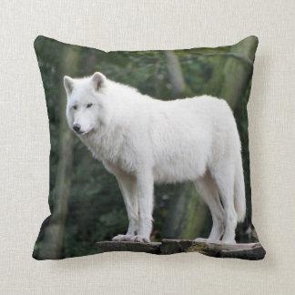 Wild White Wolf Cushion