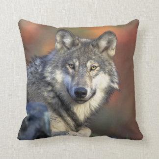 wild wolf cushion